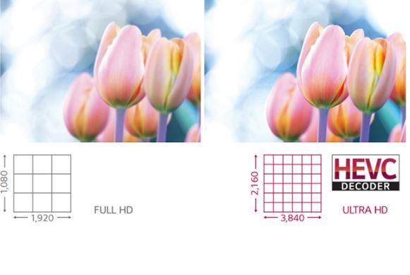 LG: Идеальное качество изображения и цвет